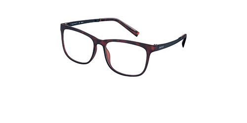 ET17531-545-Cat-high